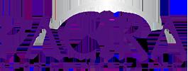 Pacira Pharmaceuticals Inc