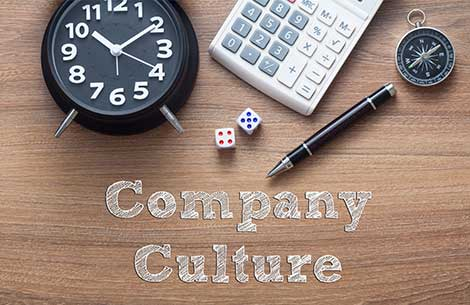 Finding the Company Culture That Fits Your Personality